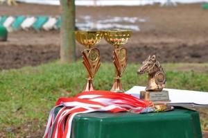 Мероприятия и соревнования в конном клебе Горки Подмосковье