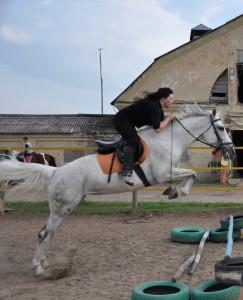 Нефертити аренда лошадей покататься верхом в подмосковье